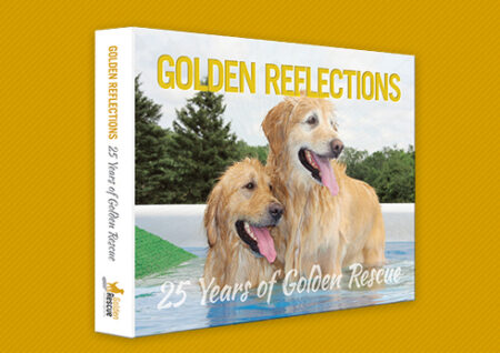 Golden Reflections Coffee Table Book