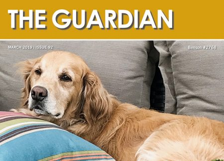 The Guardian 9