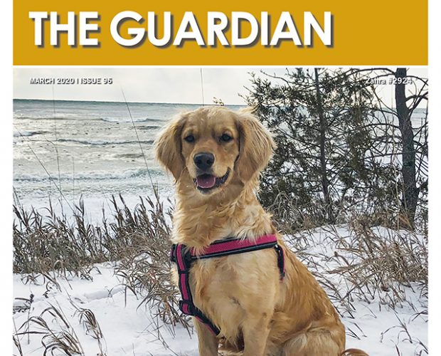 Subscribe to  The Guardian