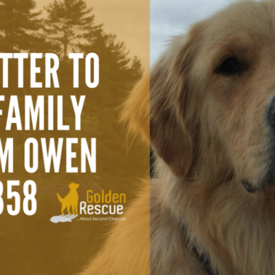 A Message from Owen #2358
