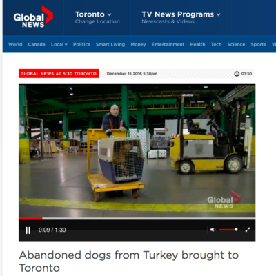 Thank you to Global News for joining us at our Home for the Holidays event