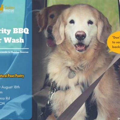 Charity BBQ and Car Wash