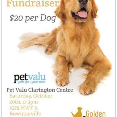 PetValu Clarington Centre Dog Wash Fundraiser