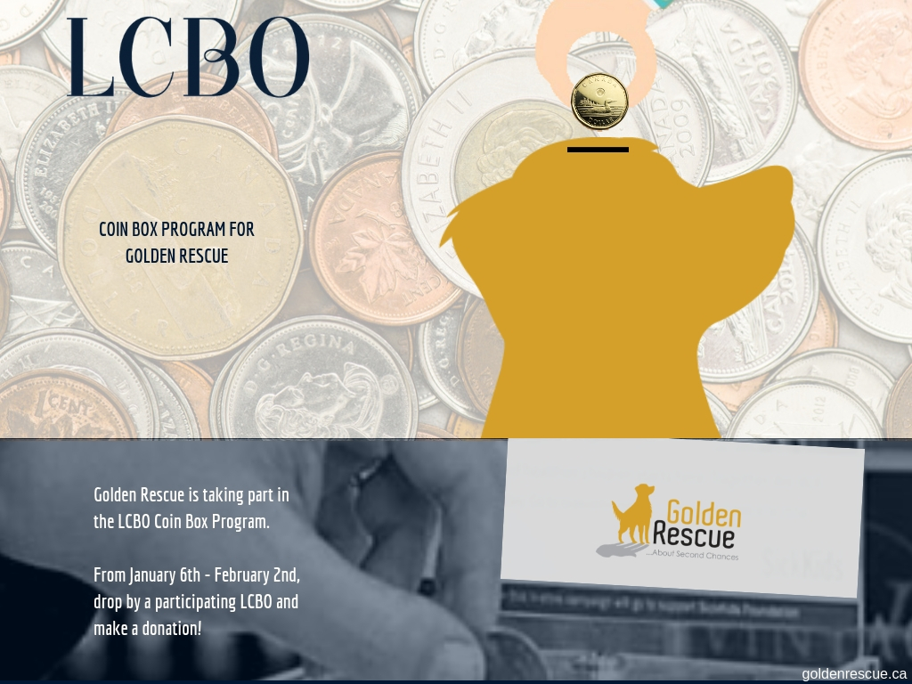 LCBO Coin Box Program