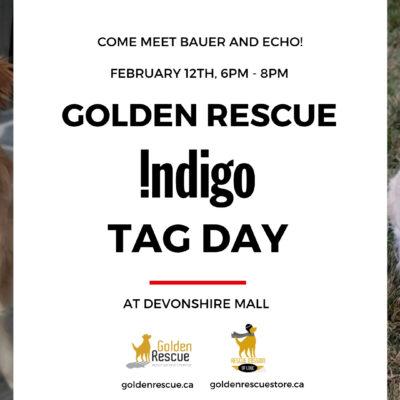 Indigo Windsor Tag Day