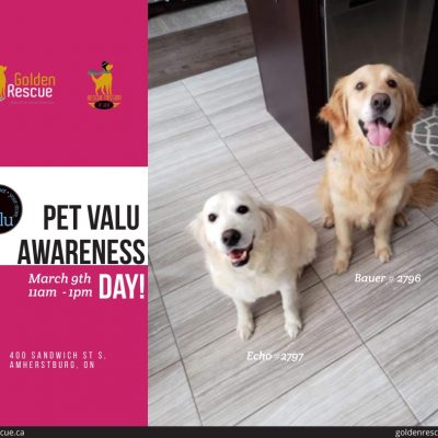 PetValu Awareness Day ~ Amherstburg
