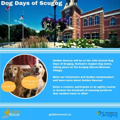 Dog Days of Scugog