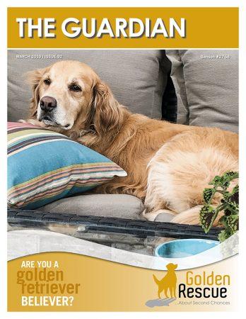 Golden Rescue 9