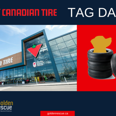 Canadian Tire Tag Day – Sudbury