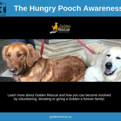 Awareness Day – The Hungry Pooch Tecumseh