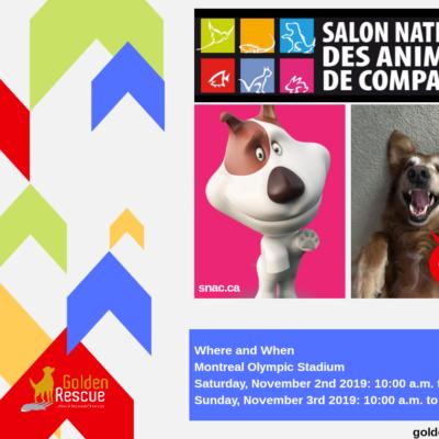 Salon National des Animaux de Compagnie (Domestic Animals)