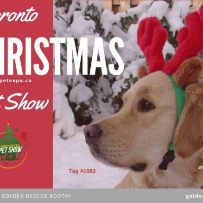 Toronto Christmas Pet Show