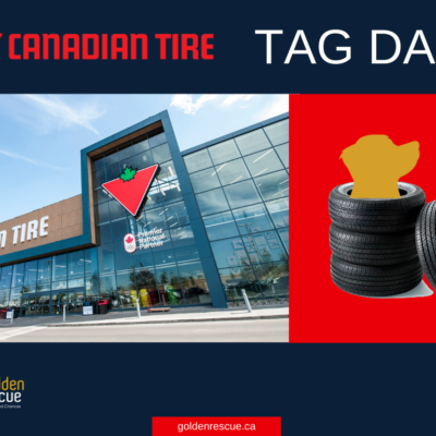 Canadian Tire Tag Day ~ Grimsby
