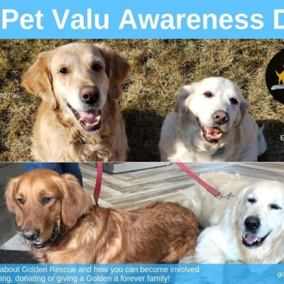 PetValu Awareness Event