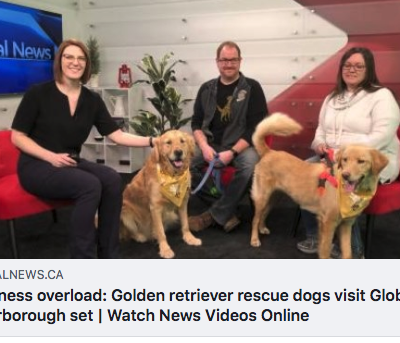 Thank you to Sarah Deeth of Global News Peterborough for having us on The Morning Show!