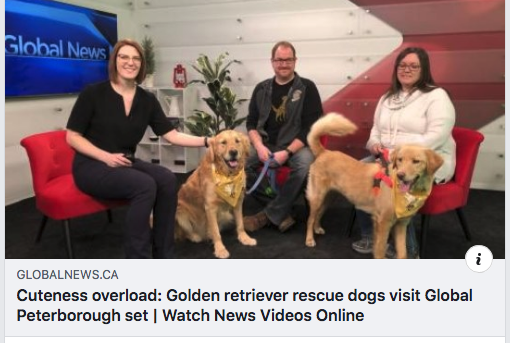 Thank you to Sarah Deeth of Global News Peterboroughfor having us on The Morning Show!