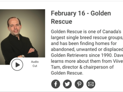 Thank you to Dave Trafford of Newstalk 1010 for taking time to chat with our Board Chair Viive Tamm about Golden Rescue.