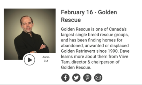 Thank you to Dave Trafford ofNewstalk 1010 for taking time to chat with our Board Chair Viive Tamm about Golden Rescue.