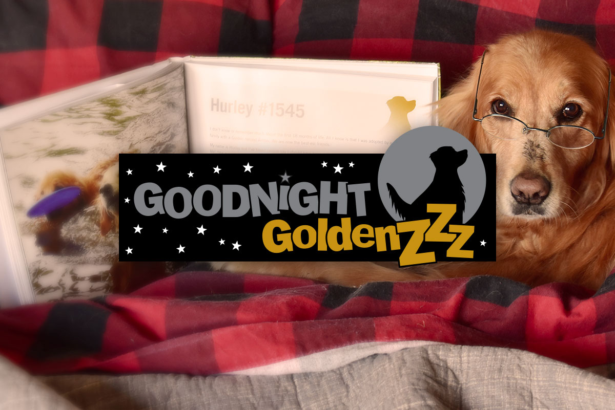 Goodnight Goldens