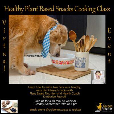$10 Tuesday Webinar – Healthy Plant-Based Snacks – CANCELLED